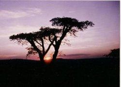 Coucher du soleil au Rwanda